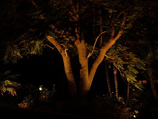 Landscape Lighting Hidden Hills